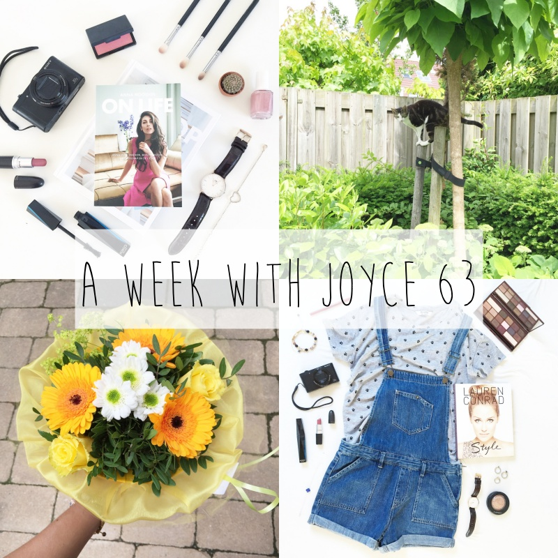 a week with joyce 63