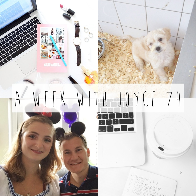 a-week-with-joyce-74