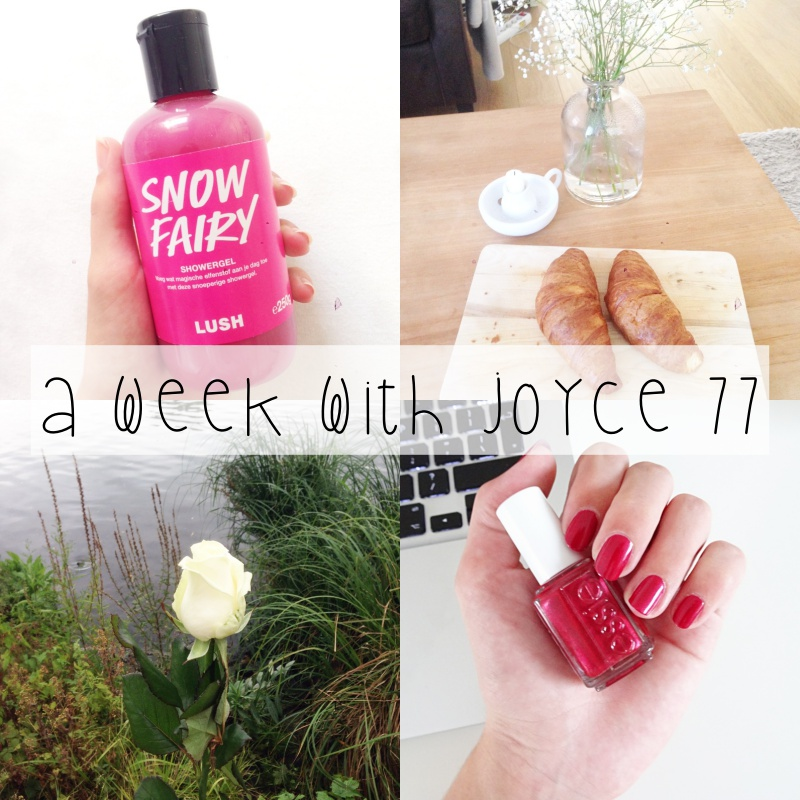 a-week-with-joyce-77
