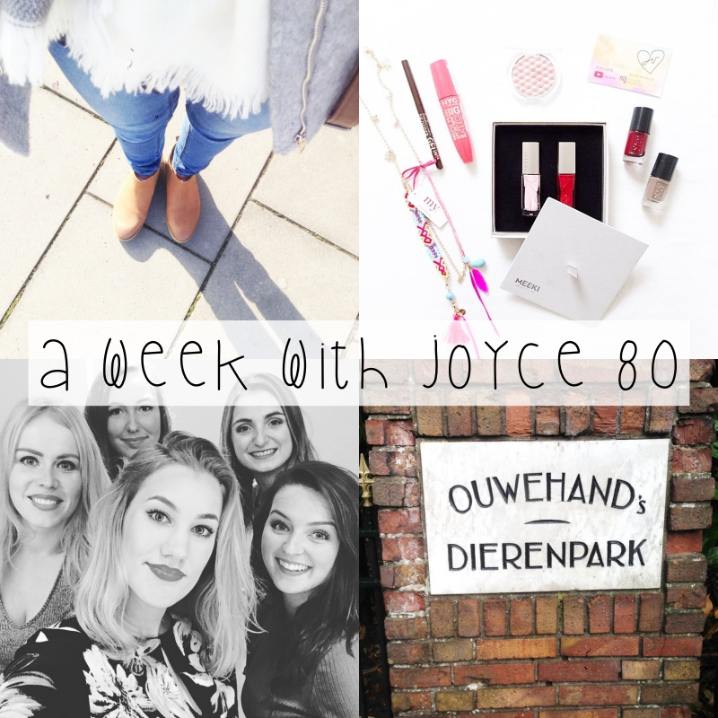 A Week With Joyce 80 || Aapjes kijken, video's opnemen met Irina & Bloggerparty