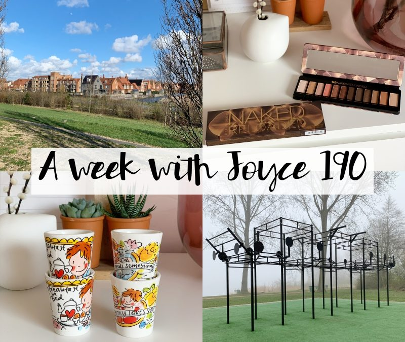 A WEEK WITH JOYCE 190 | EVEN WAT RUSTIGER AANDOEN